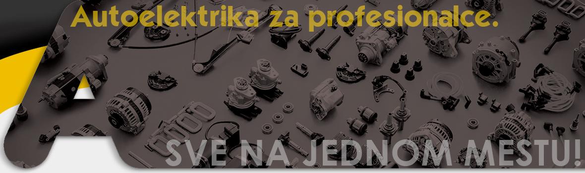 Autoelektrika-za-profesionalce